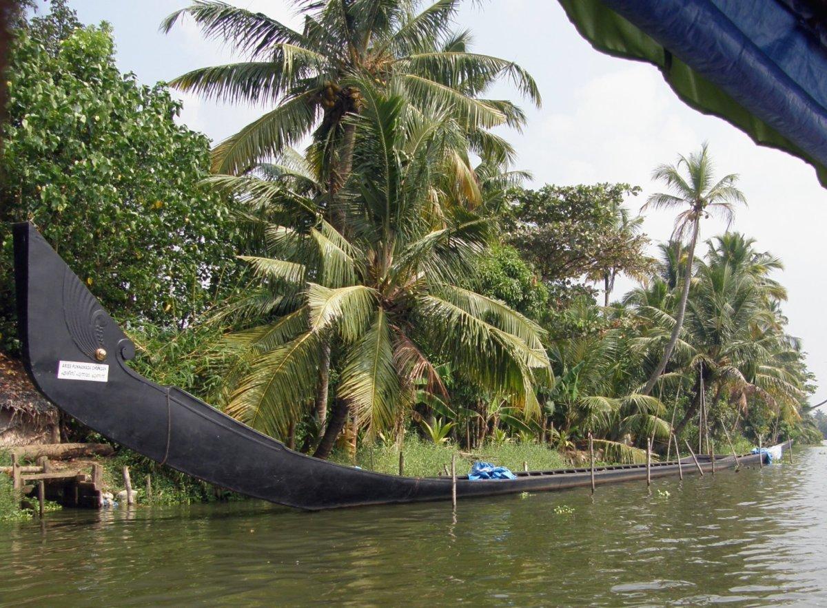 A Rainy Season at My Village - Kavalam and Kavalm Chundan Vallam