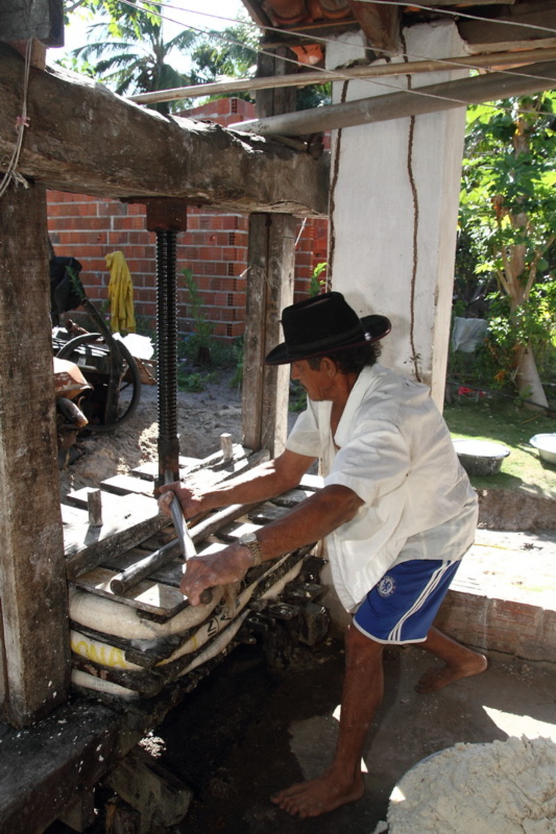 Using a press for cassava