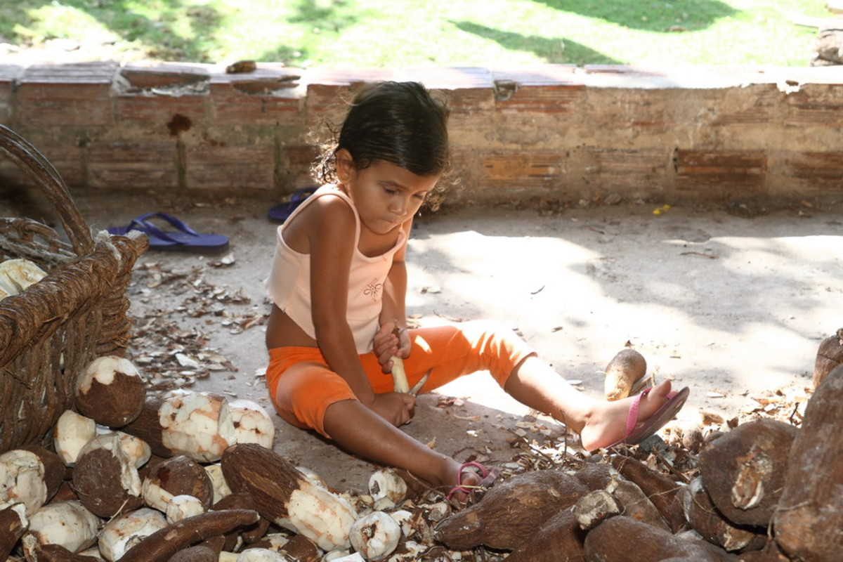 Child peeling cassava