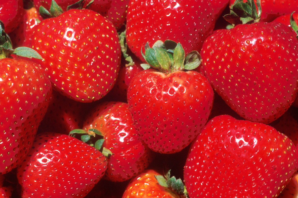 Strawberries are an excellent source of water and vitamin C