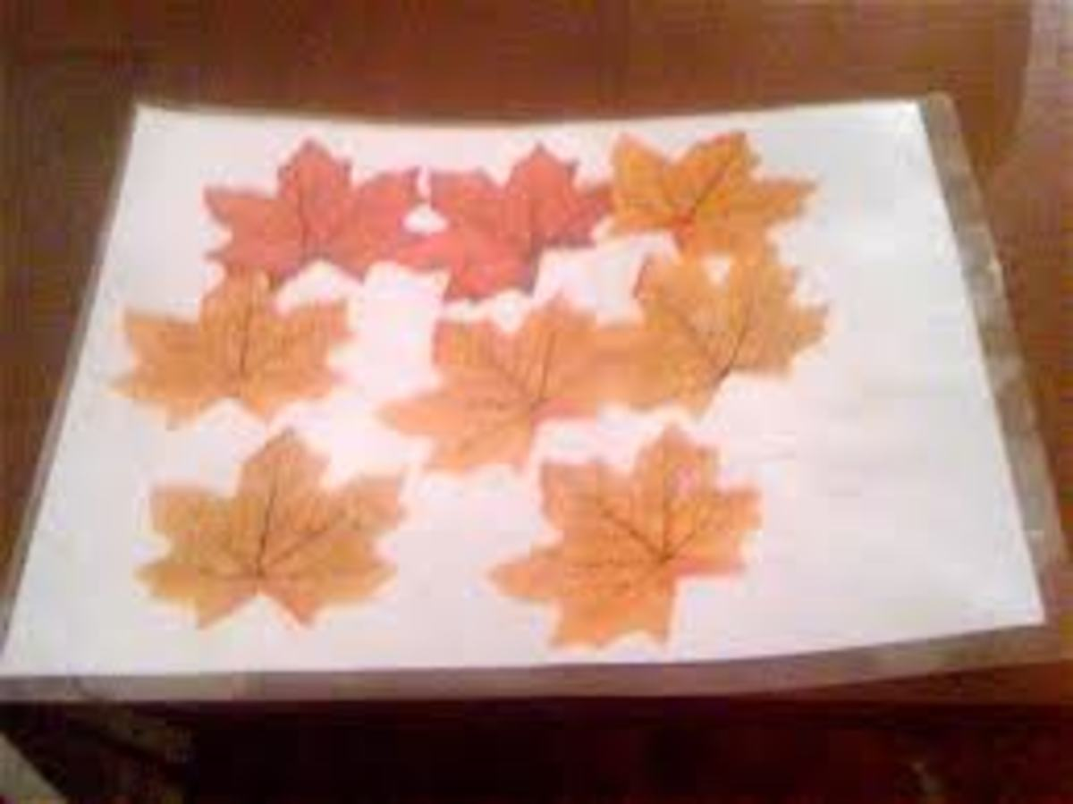 THE CLASSIC LEAF PLACEMAT!  THIS IS SOMETHING EVERY CHILD SHOULD MAKE!