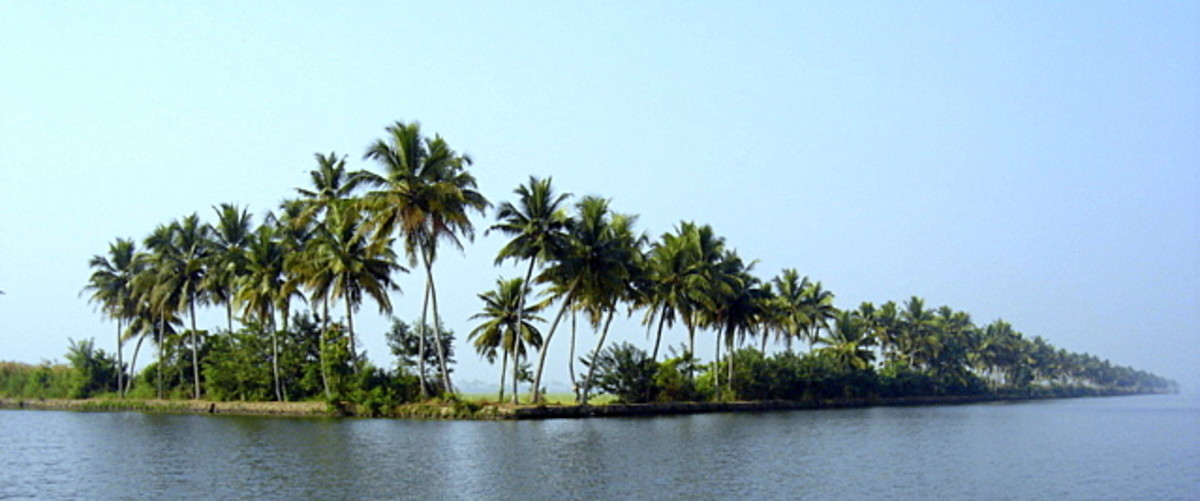 The fascinating Kumarakom, Kottayam