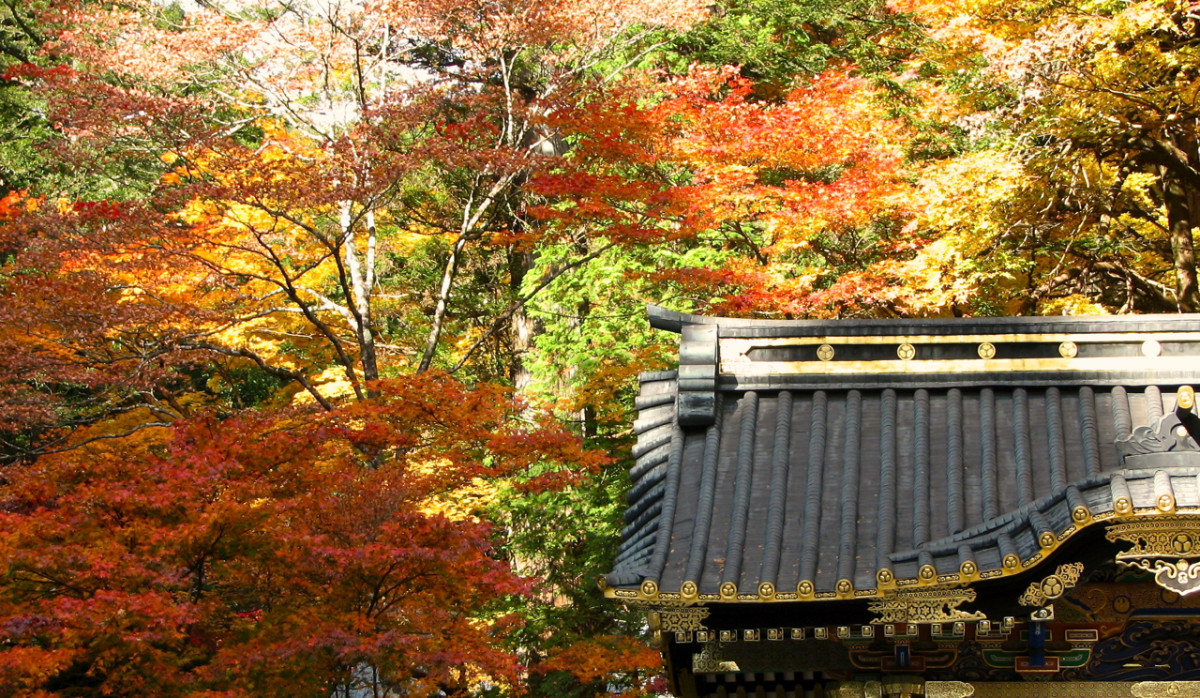 A temple roof in Nikko, Japan surrounded by autumn foliage. The colors in the top right are much more washed out as they are in bright sunlight.