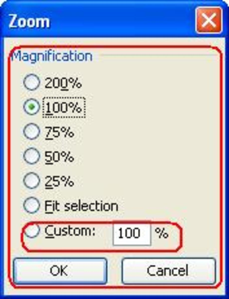 The Zoom Option of Microsoft Office Excel 2003