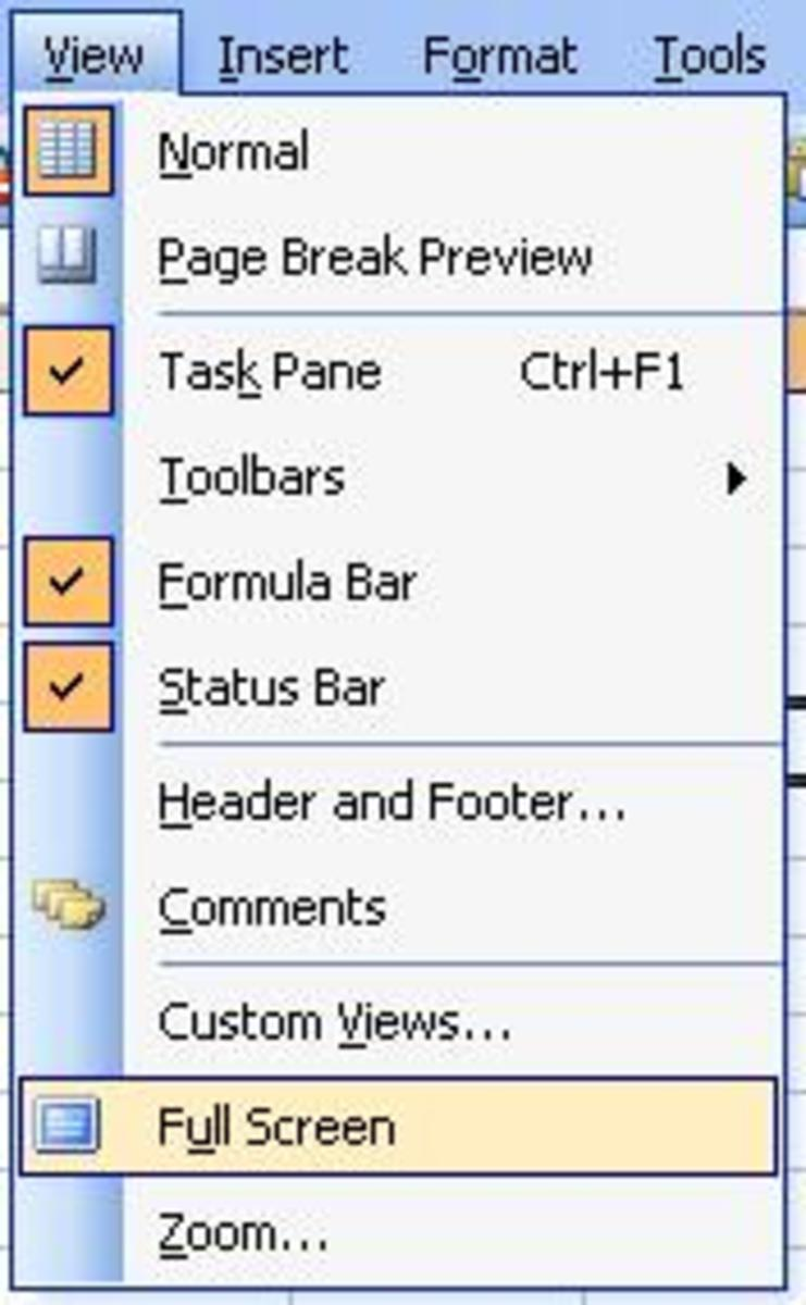 Working with the View Menu of Microsoft Office Excel 2003