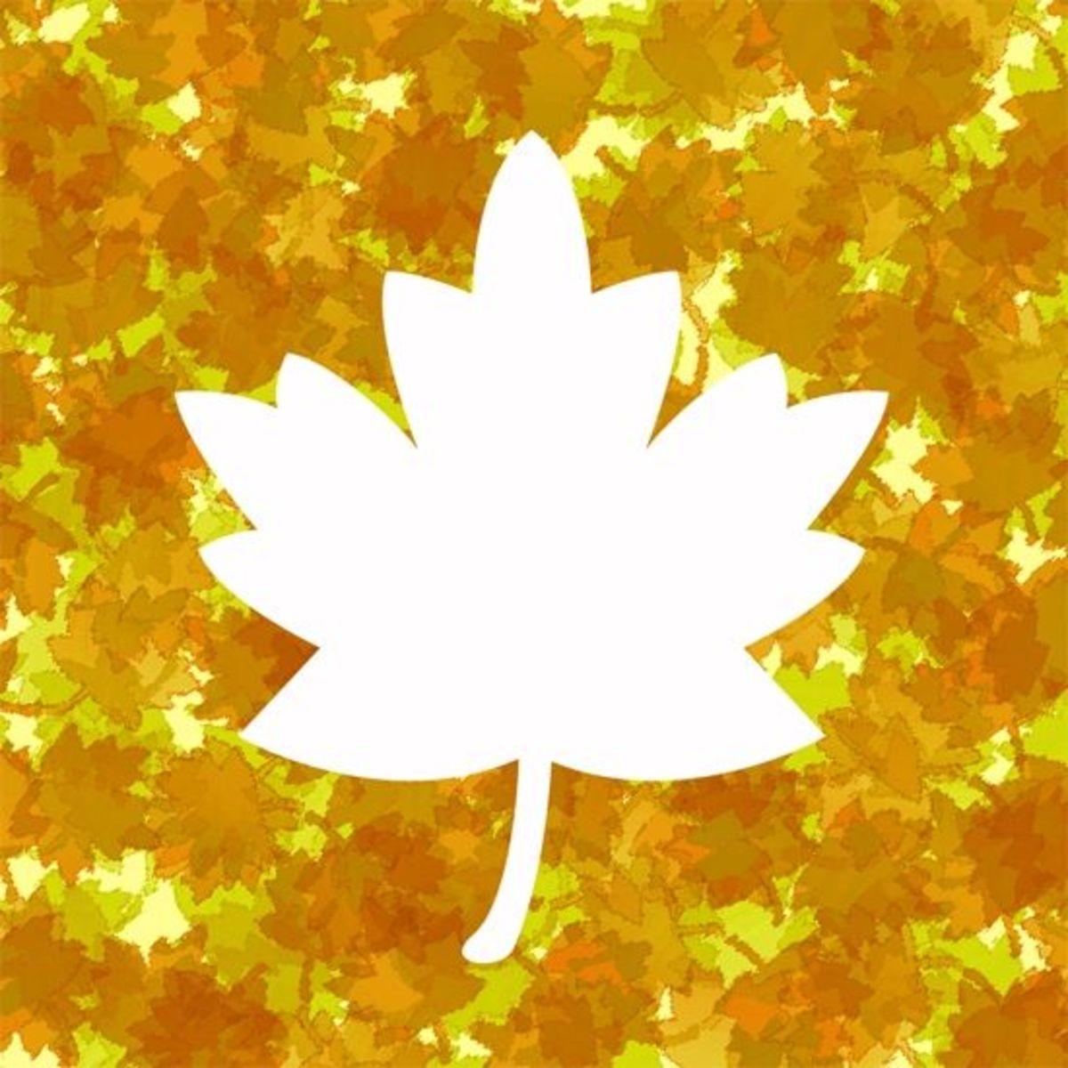 Fall leaf clipart frame.