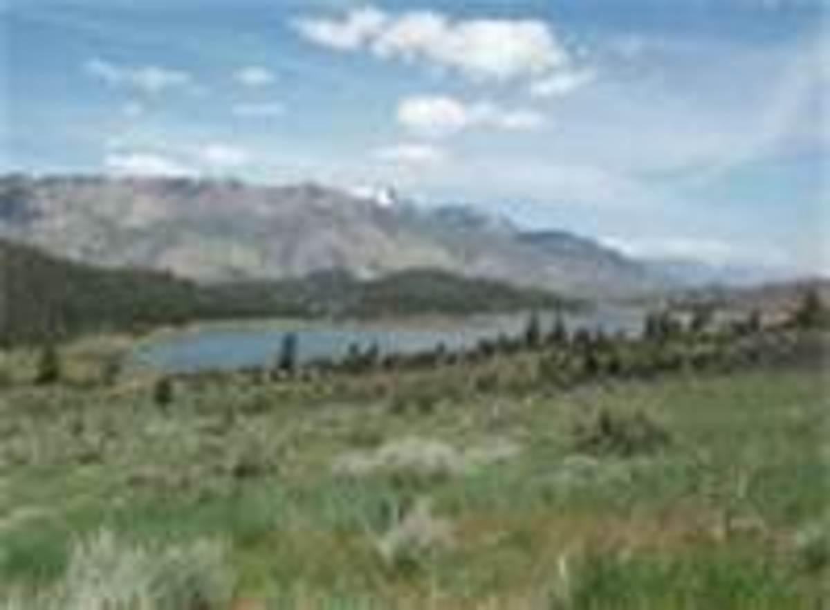 Curtz Lake CA