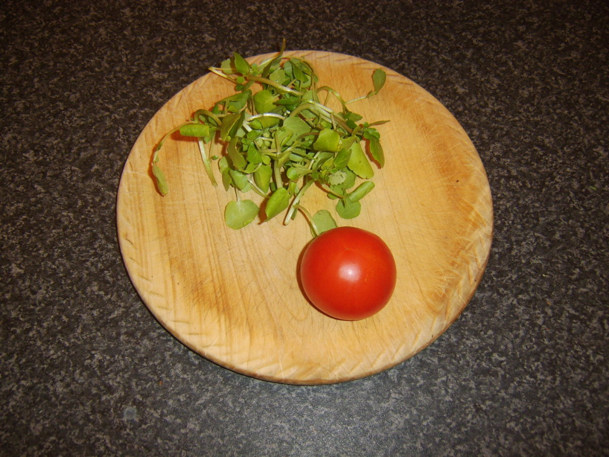 Watercress and tomato for salad garnish