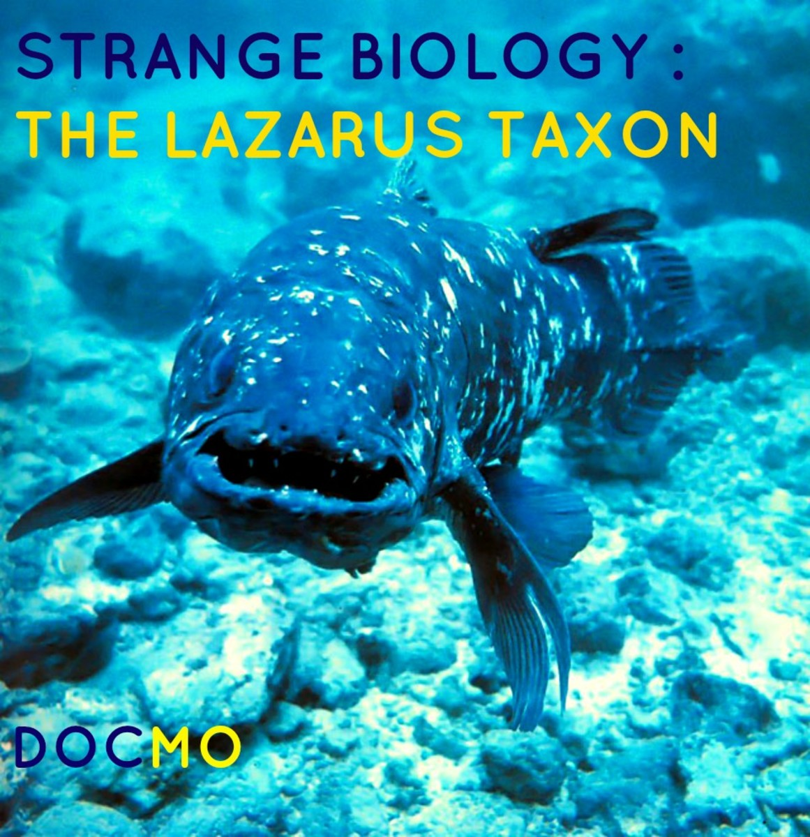 Strange Biology: The Lazarus Taxon
