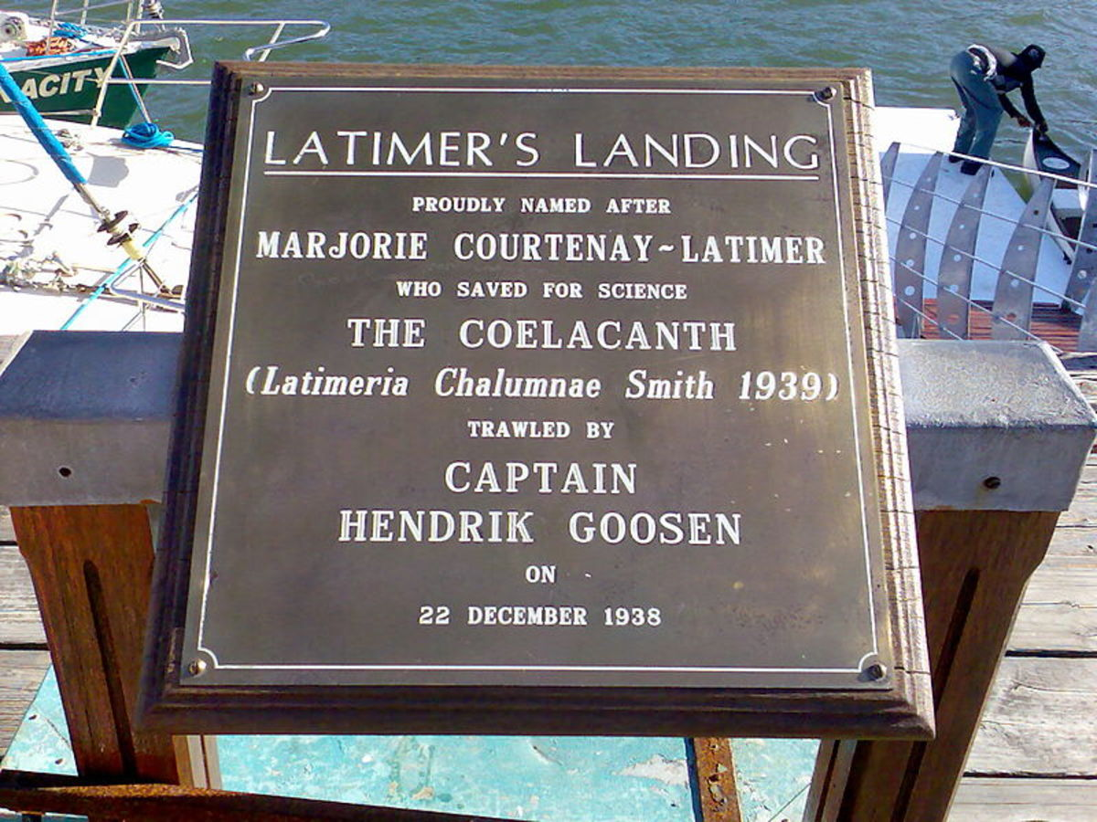 A plaque in East London, South Africa , commemorating the discovery