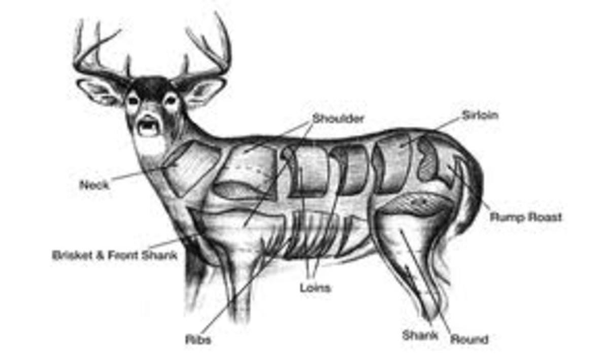 how-to-butcher-your-thanksgiving-deer