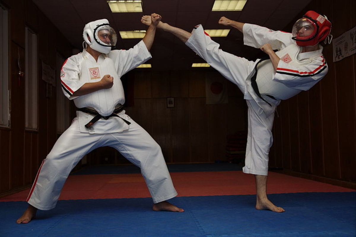 Differences Between Karate & Tae Kwon Do, A Crucial In-Depth ...