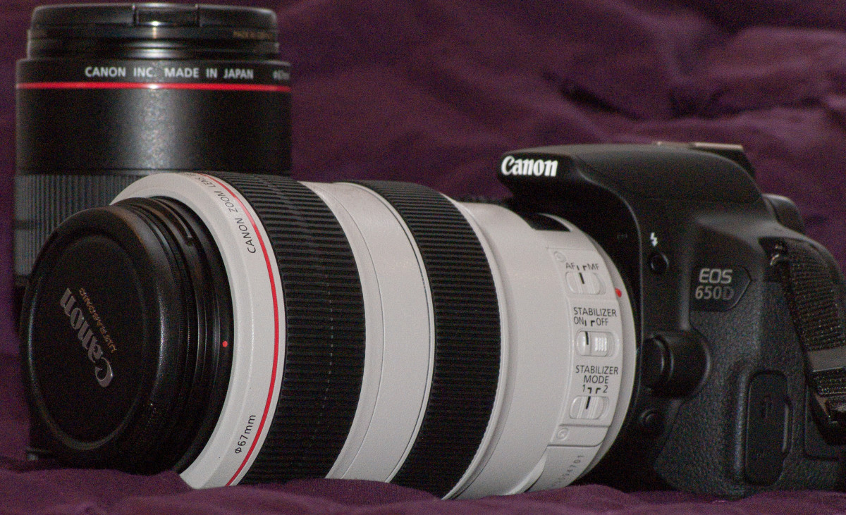 Canon 650D with the two lenses I use most often - a 100mm macro and 70-300 telephoto zoom.