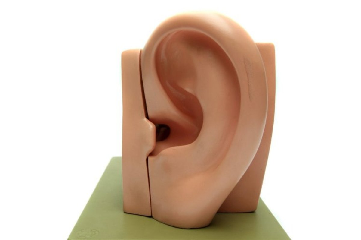 You need more than just a pair of good ears to be a good listener.