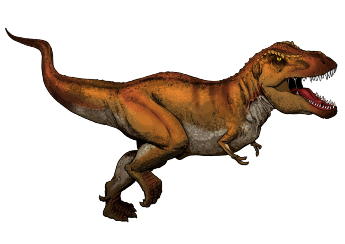 An artists impression of Tyrannosaurus Rex