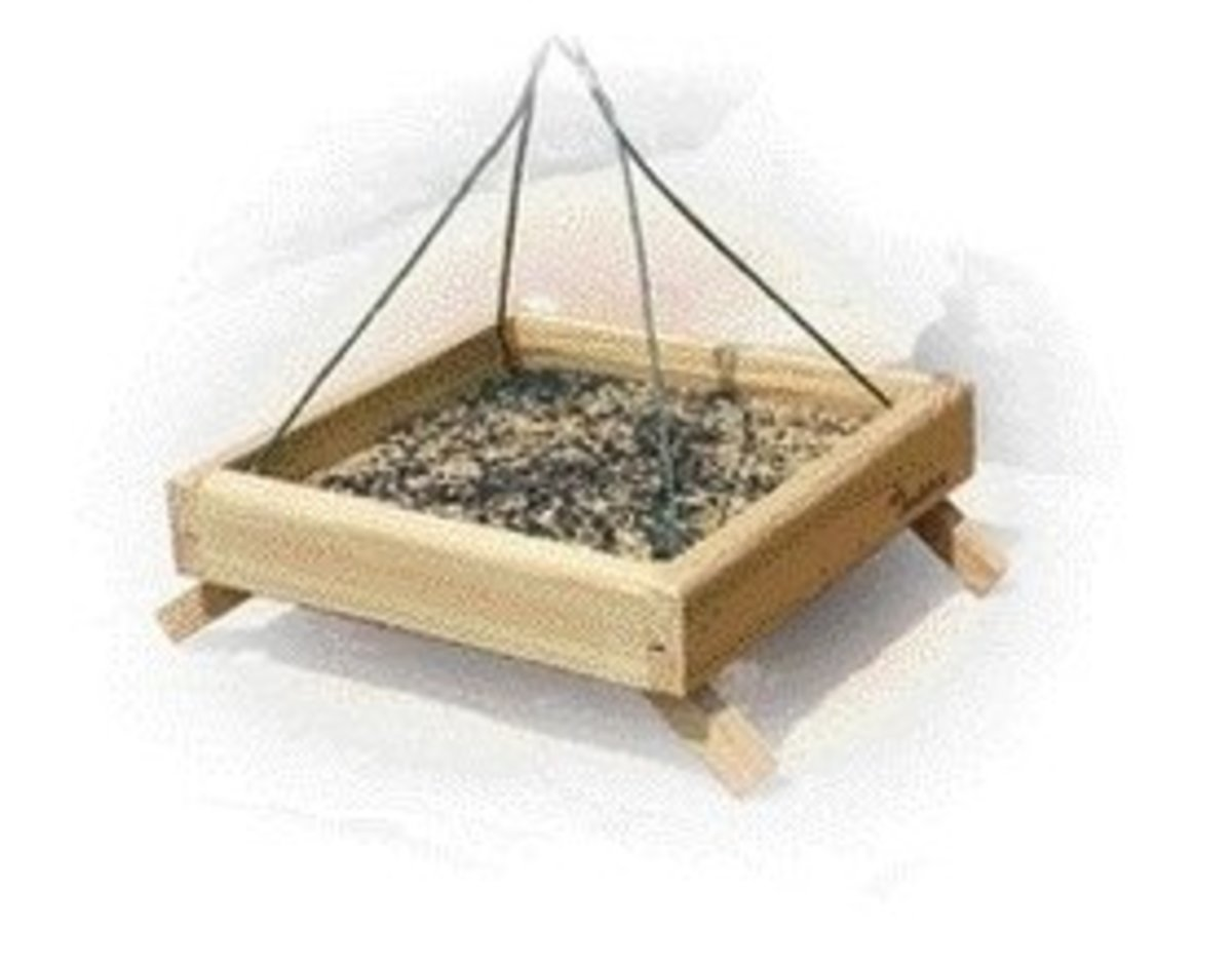 Tray feeder can be placed on the ground or hung from a hook or pole hanger arm.