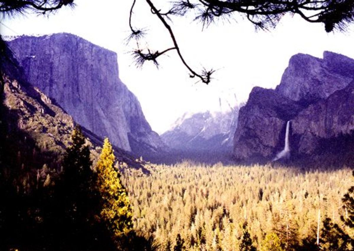 Looking down on Yosemite Valley in Yosemite National Park.