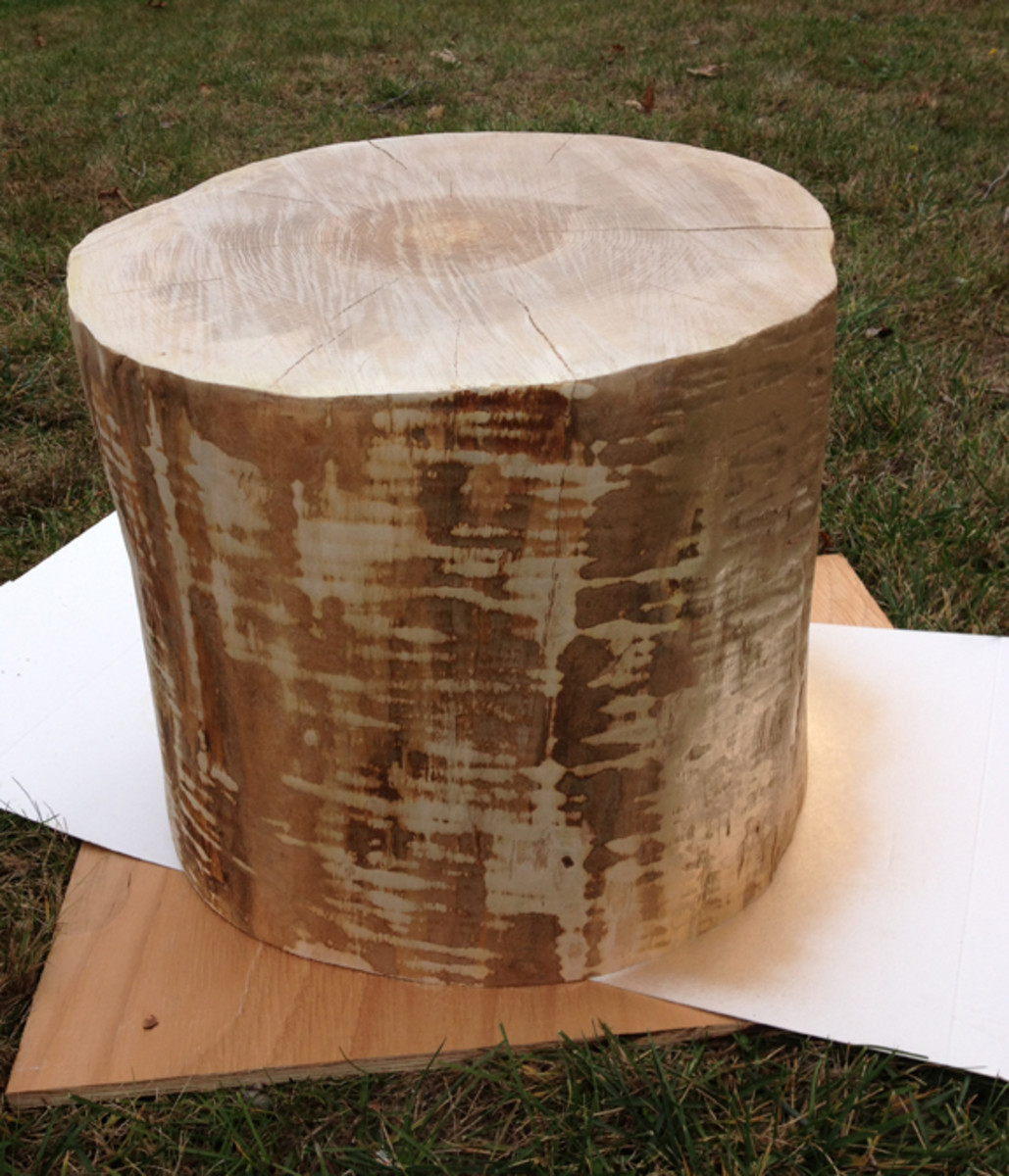 The lines that you see on the stump are not from sanding but are the natural striations in the tree.