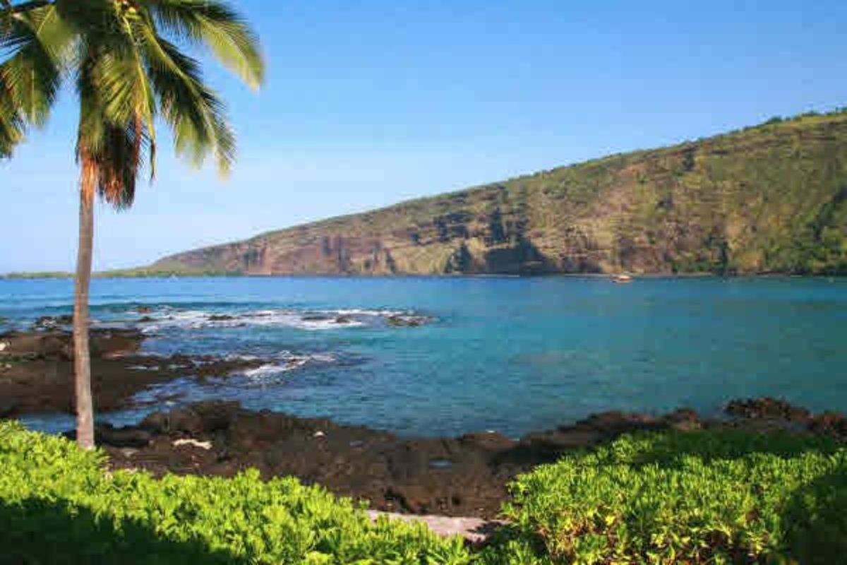 How Kona Coffee Came to Hawai'i