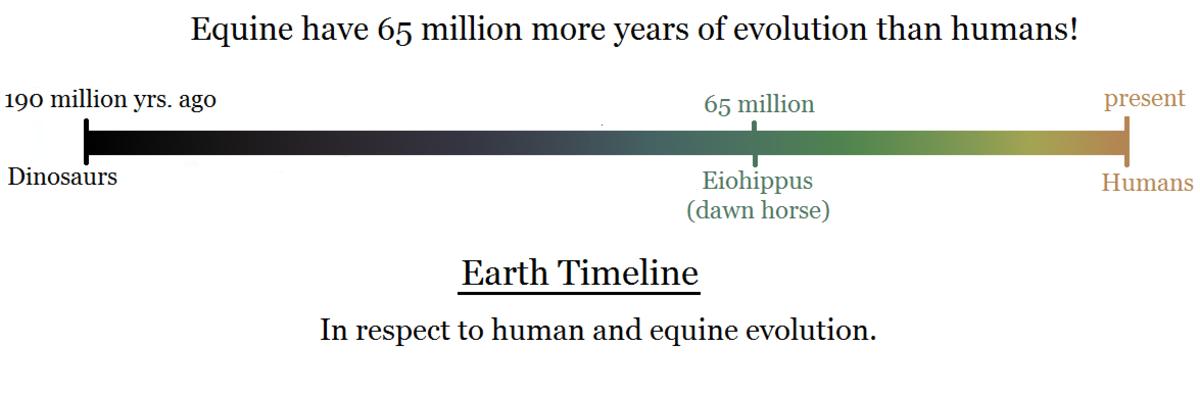 Equestrian vs. Human Timeline on Earth