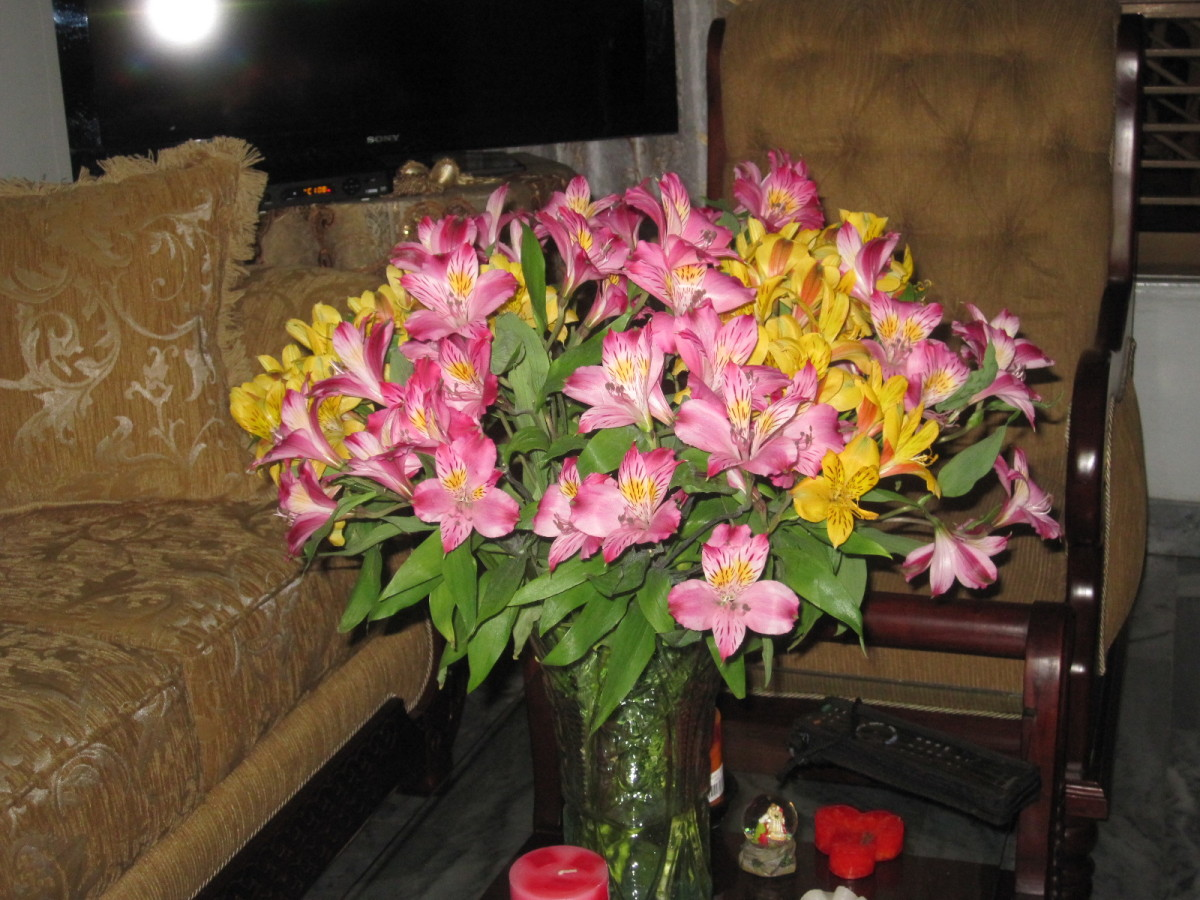 Flowers are very inexpensive in Colombia
