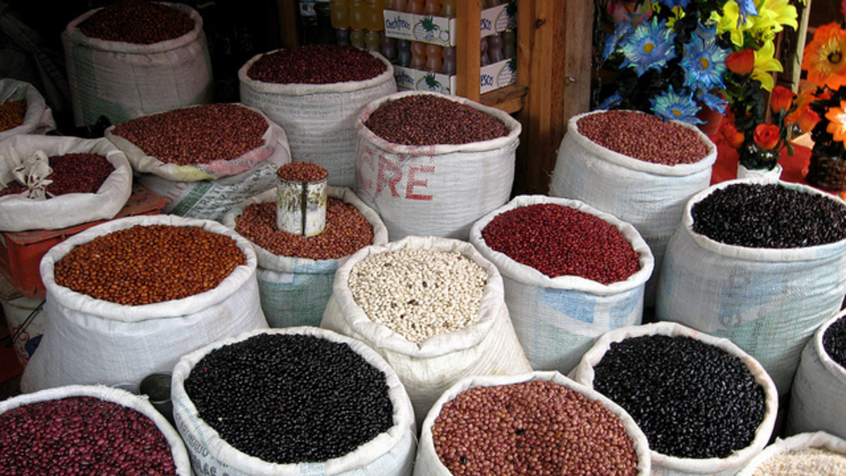 Beans for sale