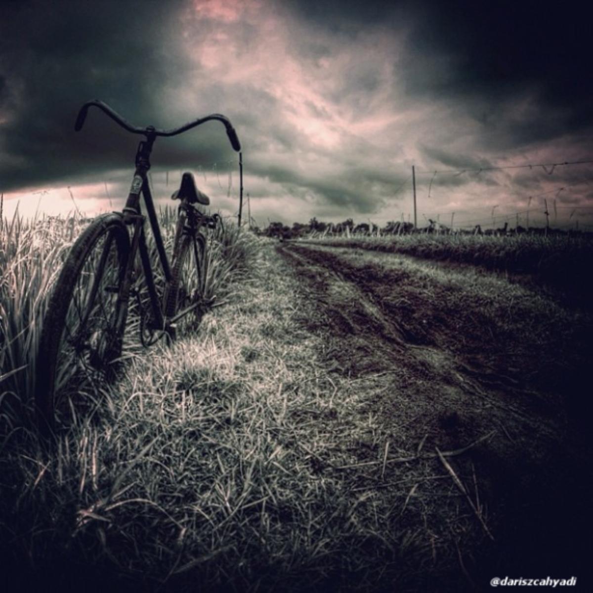 dariszcahyadi photographer on Instagram
