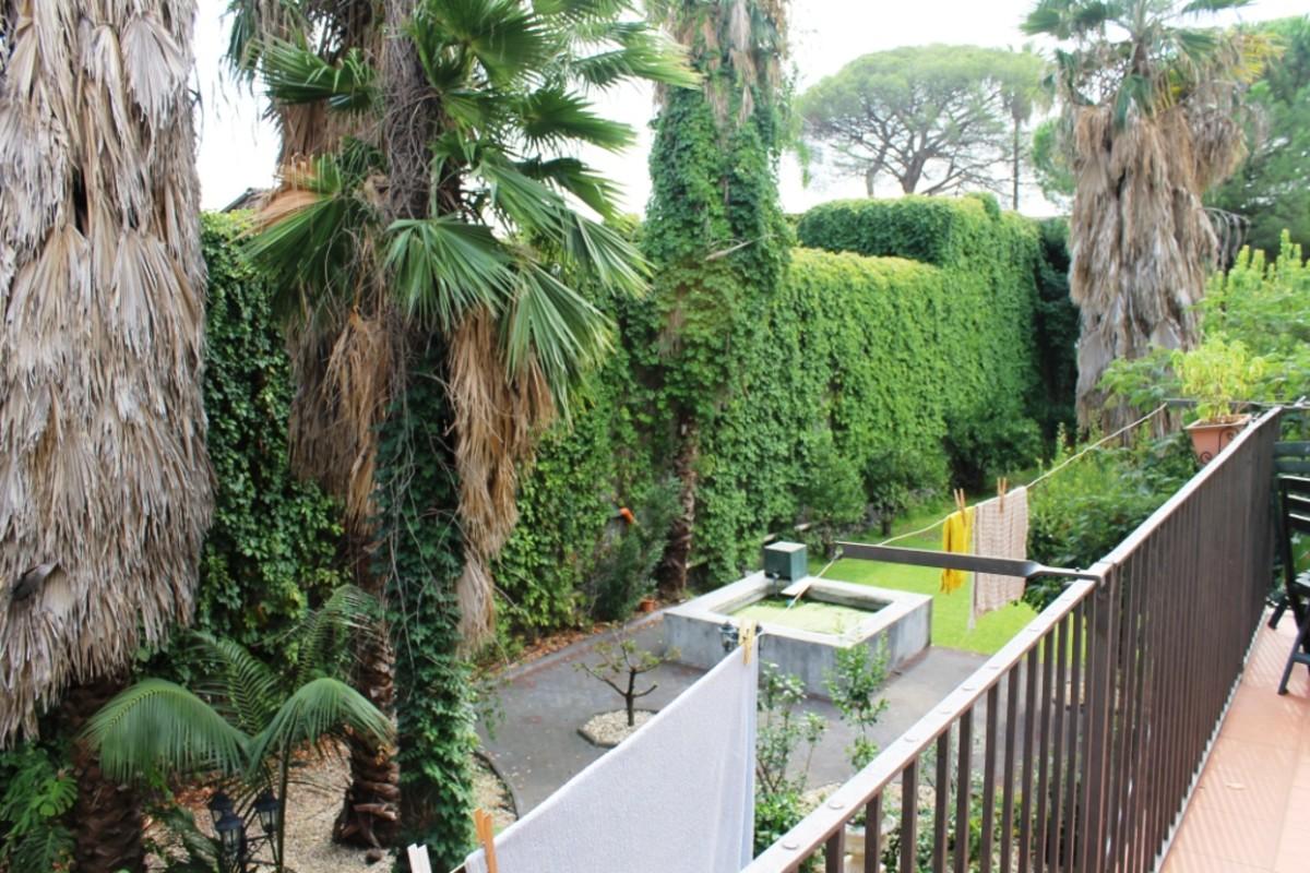 Back garden, The Captain's Villa, Riposto, Sicily.