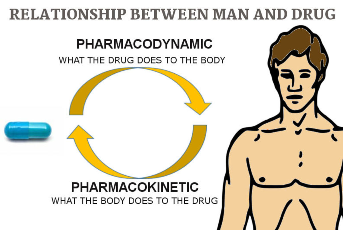 Relation between drug and man: Pharmacokinetic and Pharmacodynamic