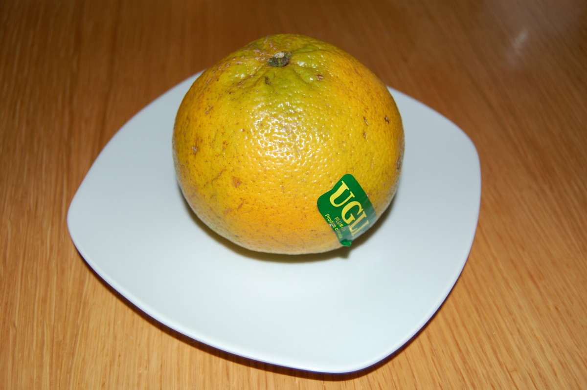 Check out your local supermarkets for Ugli Fruit.