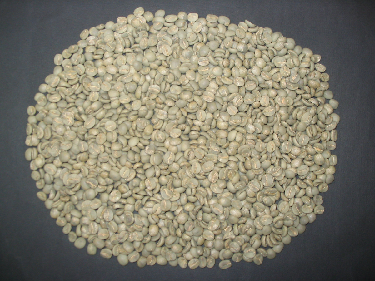 What is a green coffee buyer and how to become one