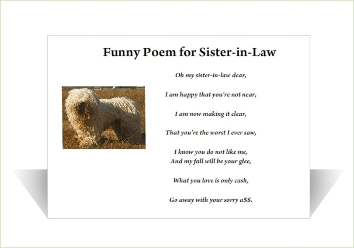 Poems For my Sister in Law Funny Sister-in-law Poem