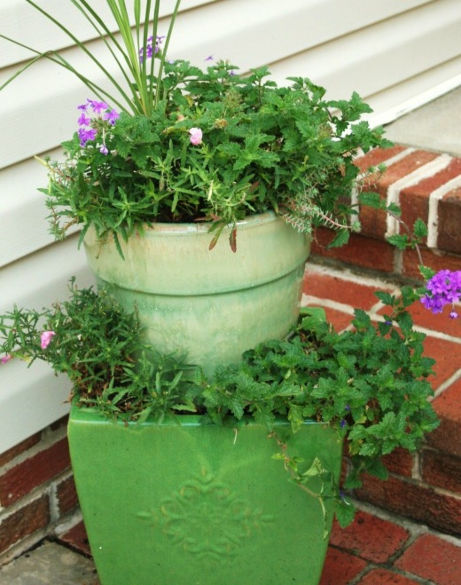 how-to-plant-stacked-containers