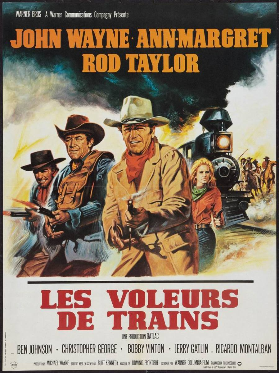 The Train Robbers (1973) Italian poster