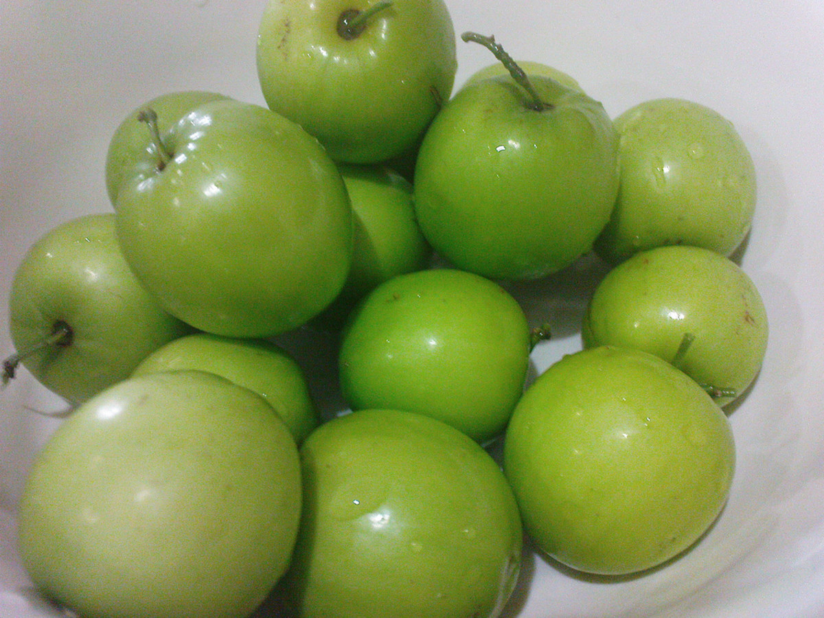 is it an apple or a jujube fruit?