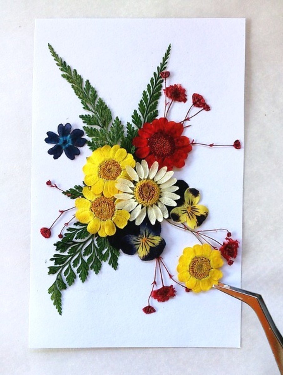 how-to-press-flowers-for-cards-and-pictures
