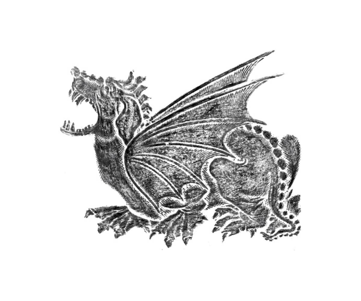 Graphite rubbing of a dragon on white paper