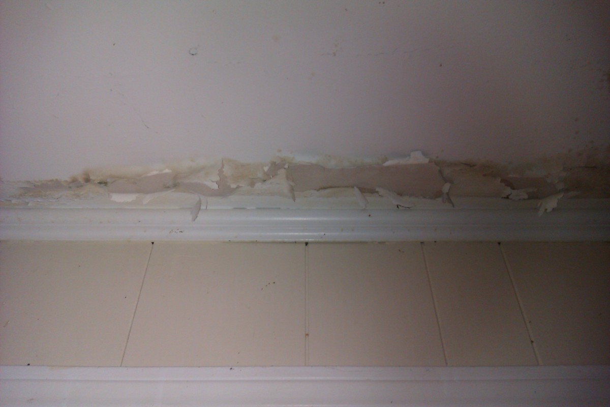 The effect of mold on ceiling paint