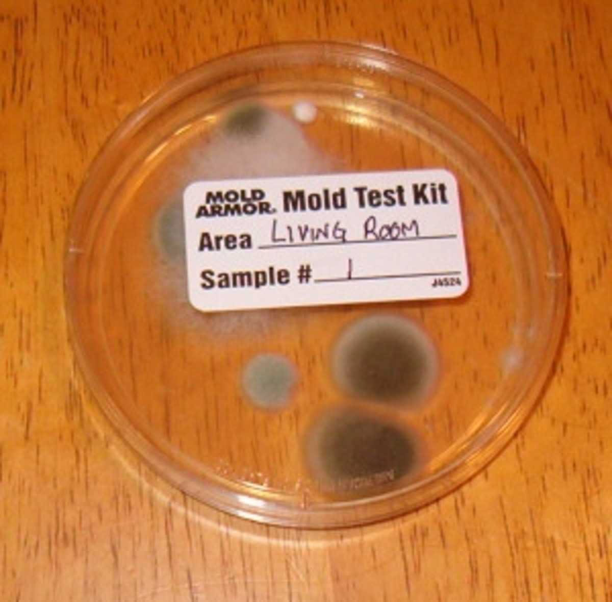 A mold test kit from Home Depot
