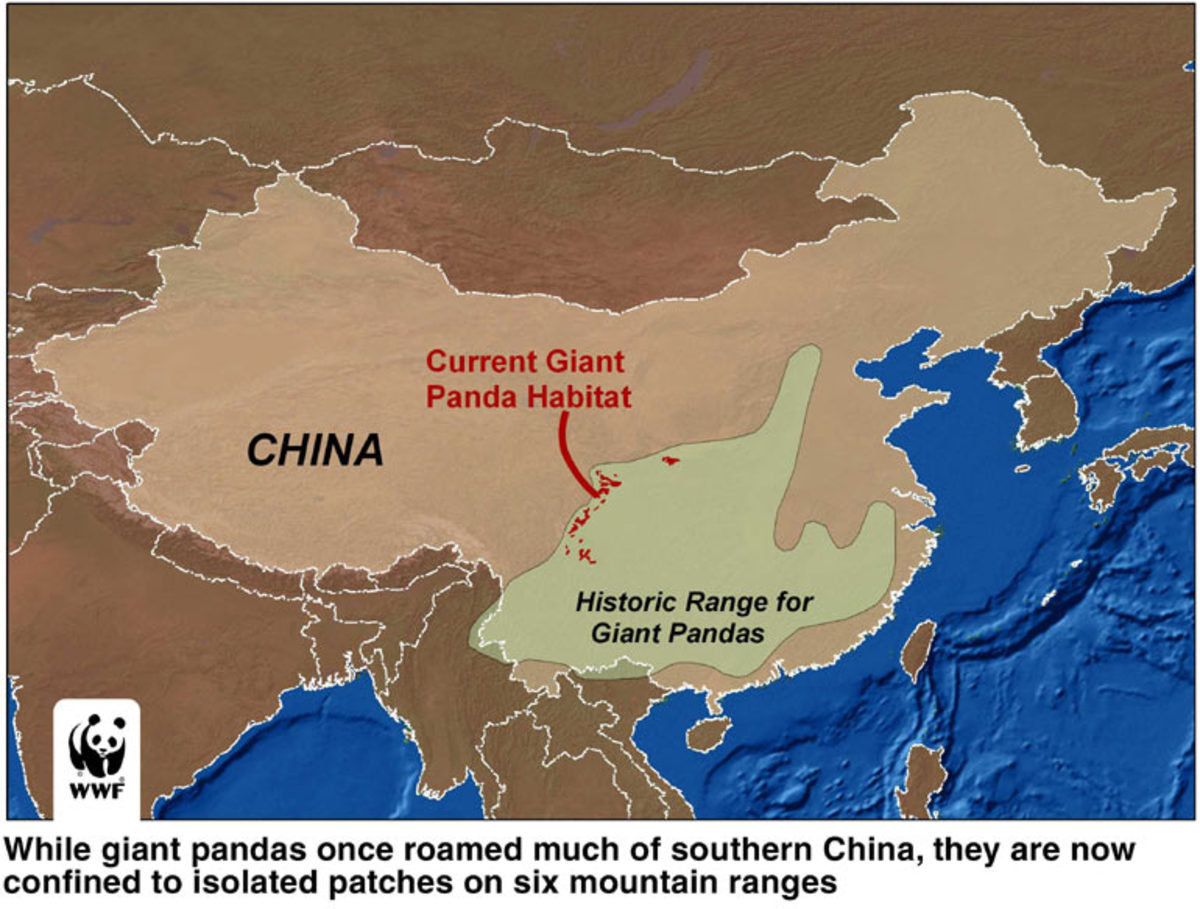 Map of Giant Panda Range
