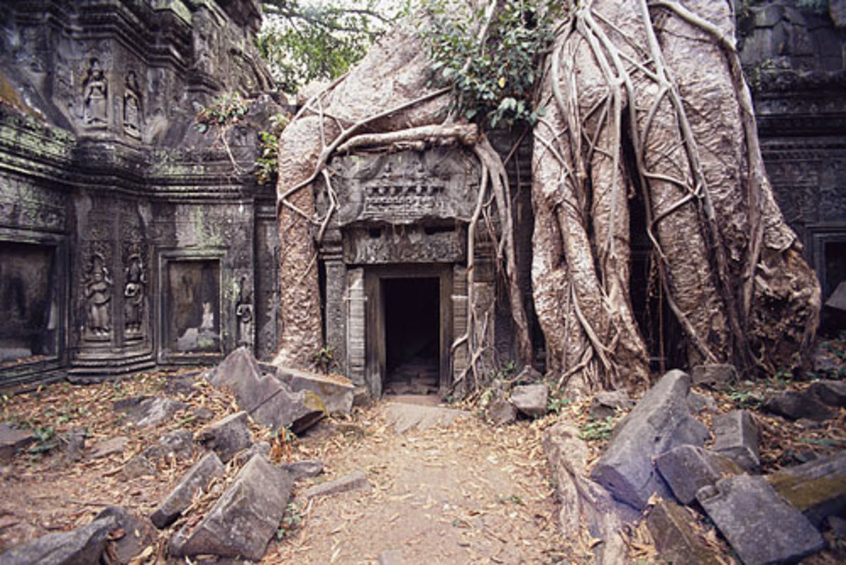 Temple of Ta Prohm, Angkor, Cambodia