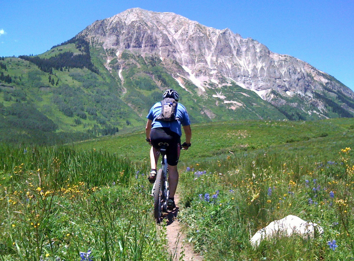 Top 5 Best Entry Level Mountain Bikes for Beginners on a Budget—2014
