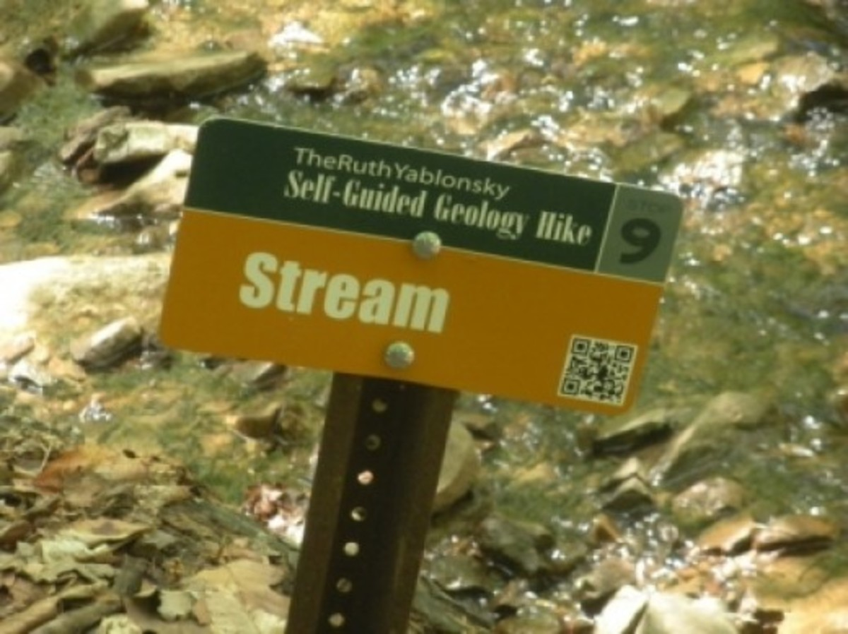Thankfully There's a Sign to Tell us This is a Stream