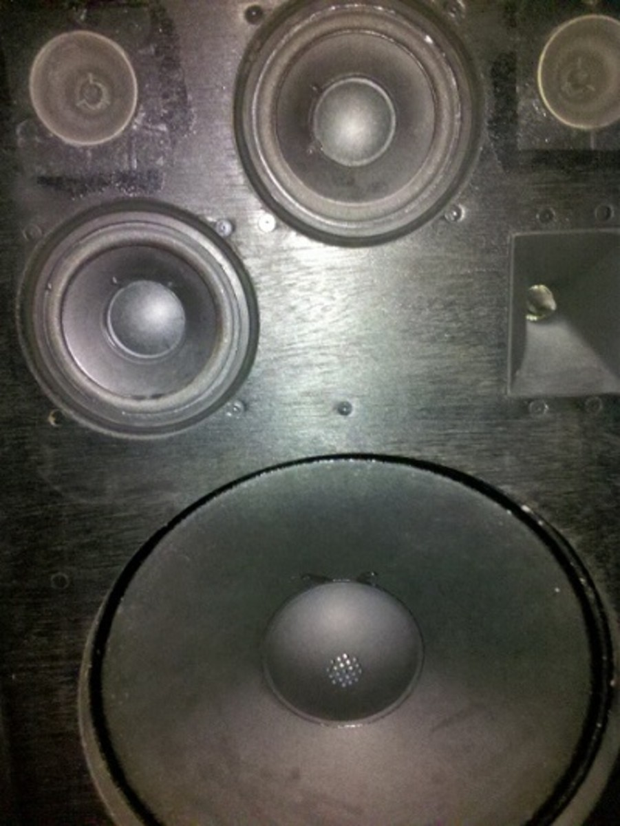 Check the cones, surrounds and dustcaps (or dustcovers) of classic speakers before purchasing.