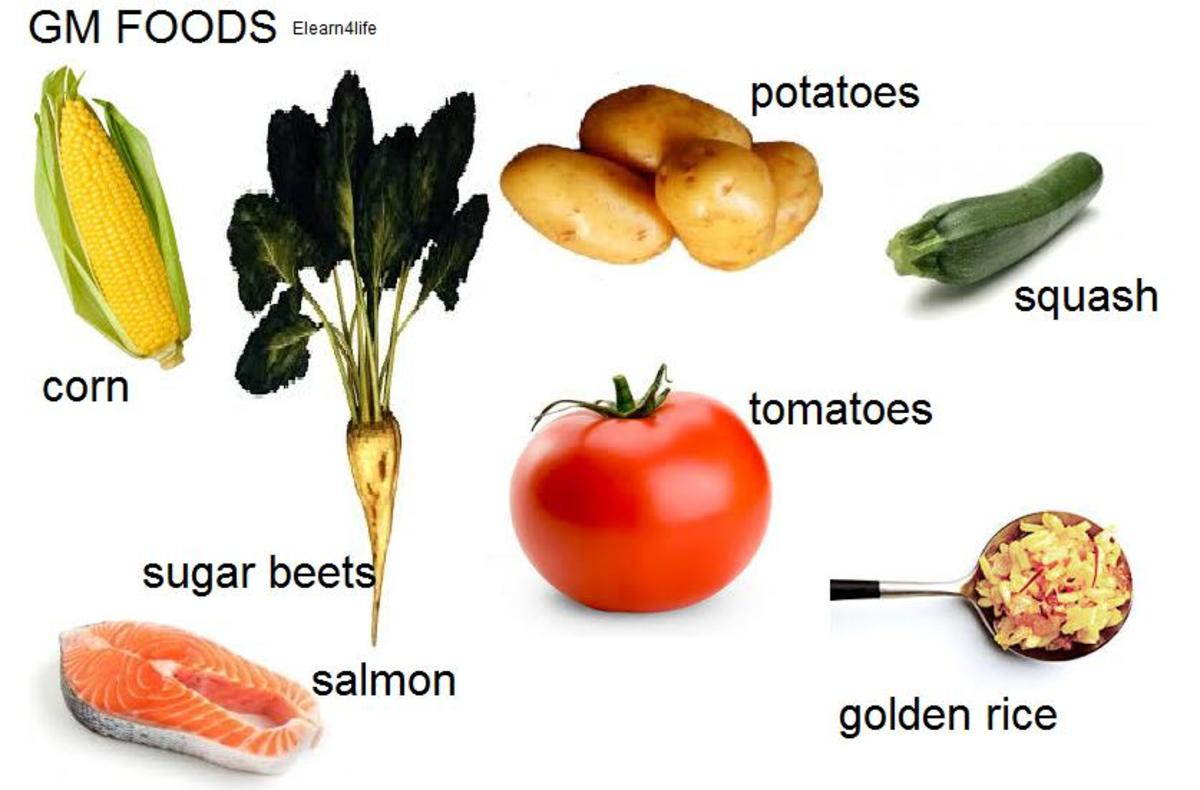 Possible Processed Food List