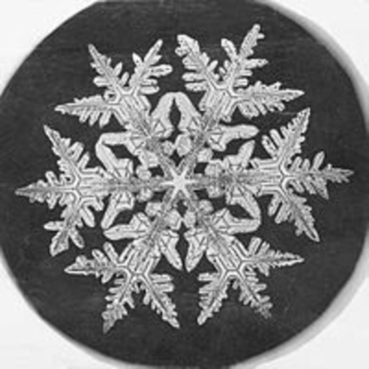 Snowflake micrograph, 1890.