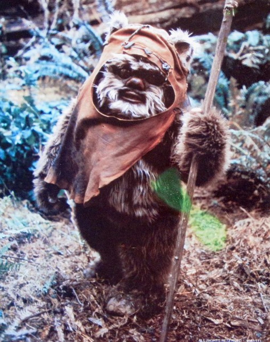 Ewok in the Forest of Endor