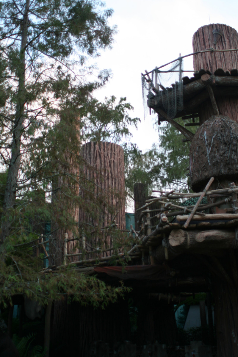 Ewoks make their homes up in trees.