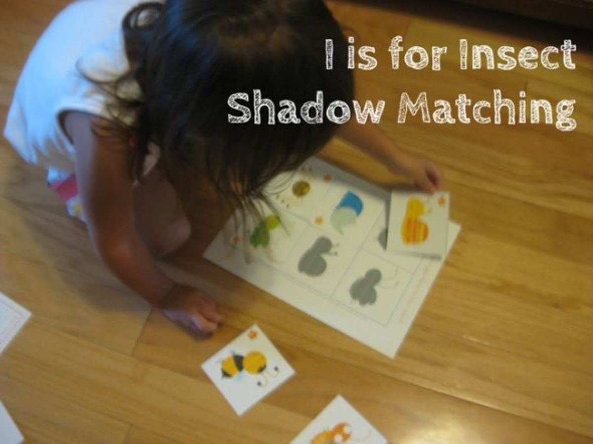 alphabet activites for kids i is for insect shadow matching