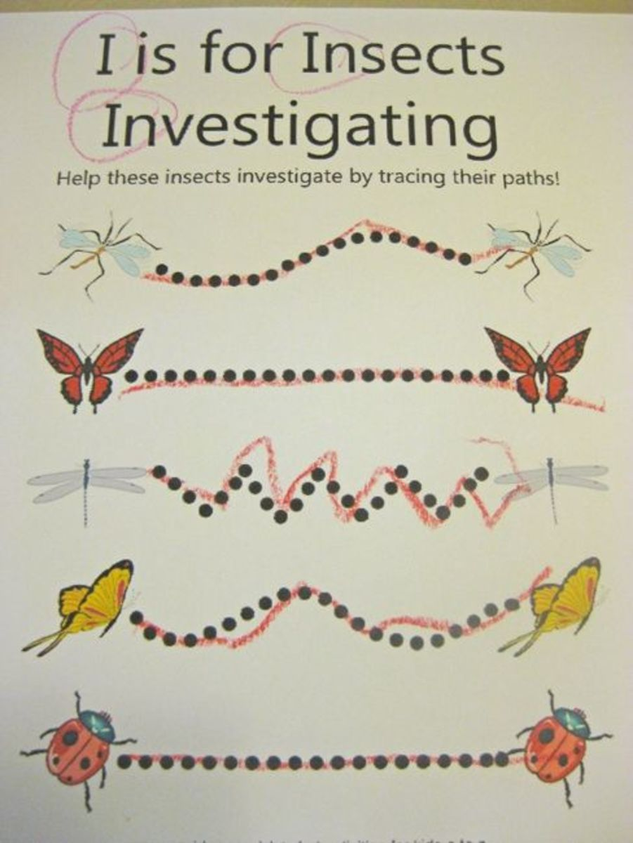 alphabet activites for kids i is for insects investigating